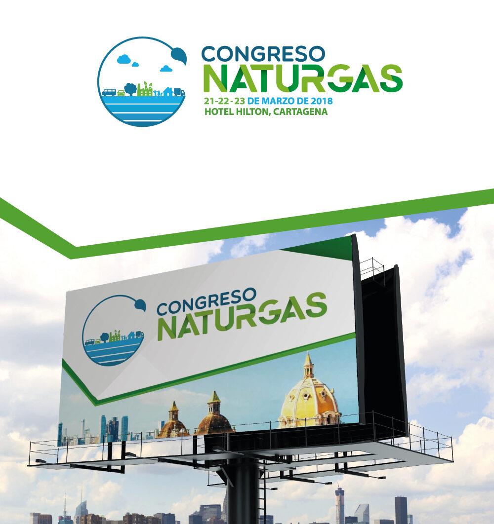 Naturgas_Portafolio_1